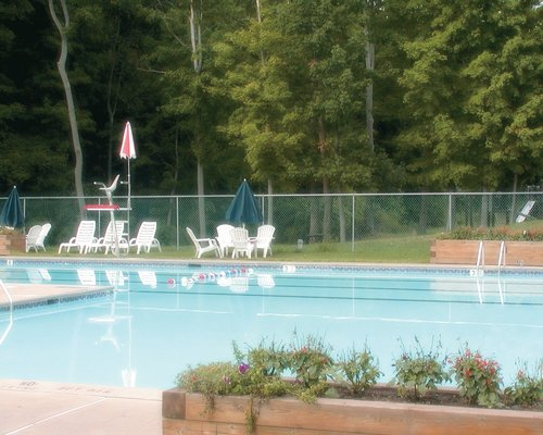 An outdoor swimming pool near a wooded area.