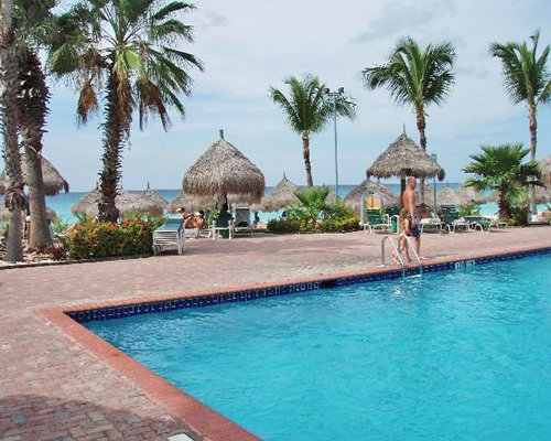 An outdoor swimming pool along side palm trees and thatched sunshades.