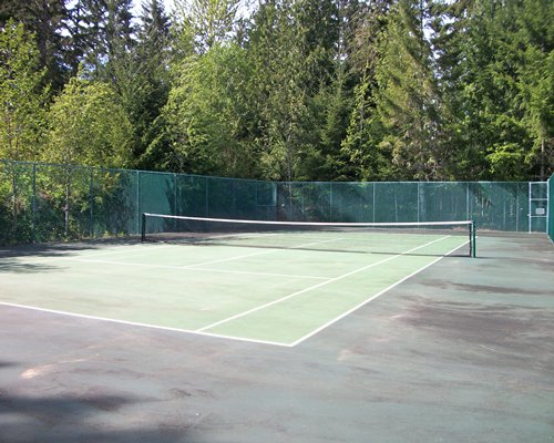 An outdoor tennis court near wooded area.