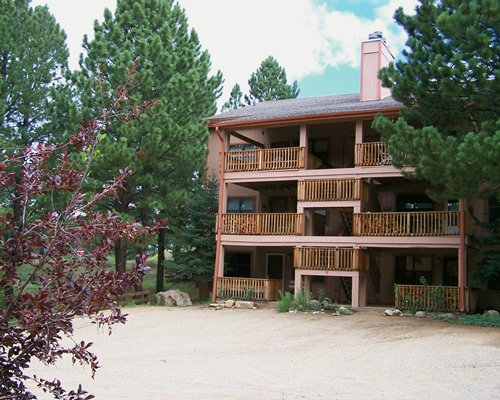 Exterior view of multiple unit balconies surrounded by tall trees.