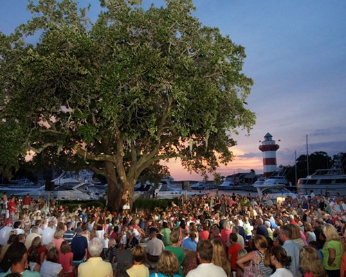 Group of people enjoying a concert with a large tree.