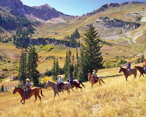 Scenic view of people horse back riding through the mountains.