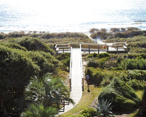 Scenic aerial view of a pathway leading to the ocean.