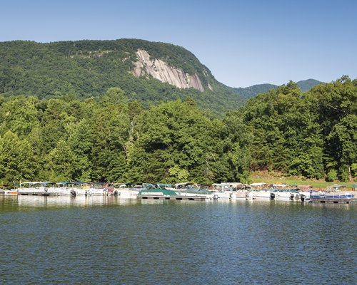 A lake view of a marina surrounded by a wooded area.