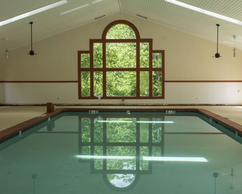 Indoor swimming pool with forest view.