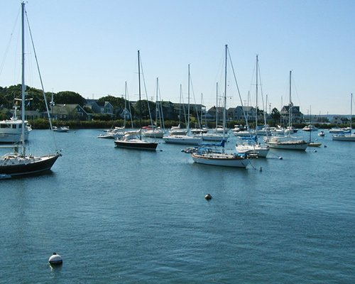 A view of the ocean with multiple sail boats.