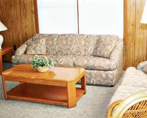 A furnished living room with two sofas.
