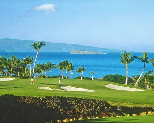 Golf course with palm trees and ocean view.