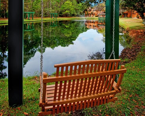 Wooden swing with lake view surrounded by trees.