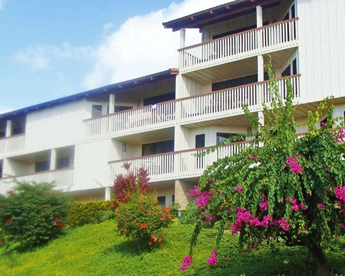 Scenic multiple condos with private balconies and flowering shrubs.