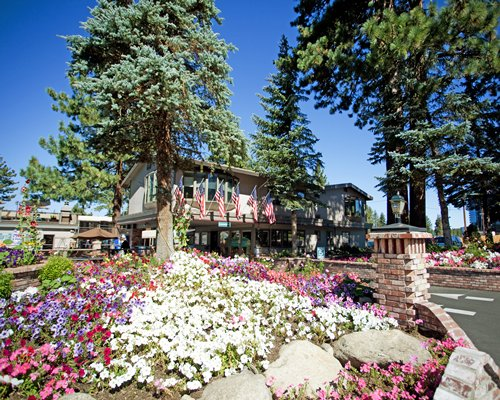 A scenic view of the Stardust  Tahoe resort surrounded by wooded area.