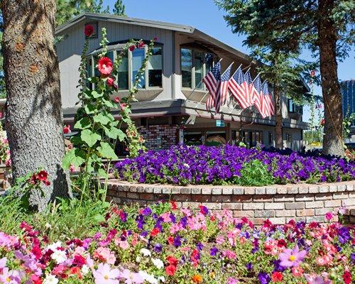 Exterior view of Stardust Tahoe resort with flowering shrubs.