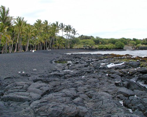 A view of rocky shore alongside ocean surrounded by wooded area.