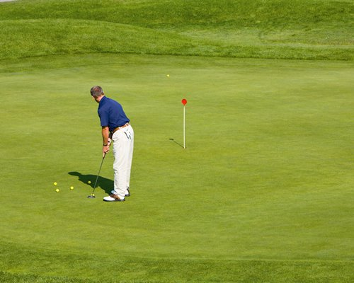 A person playing on the golf course putting green.