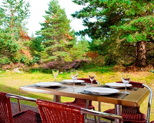An outdoor dining near wooded area.