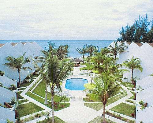 An aerial view of outdoor swimming pool and ocean with palm trees.