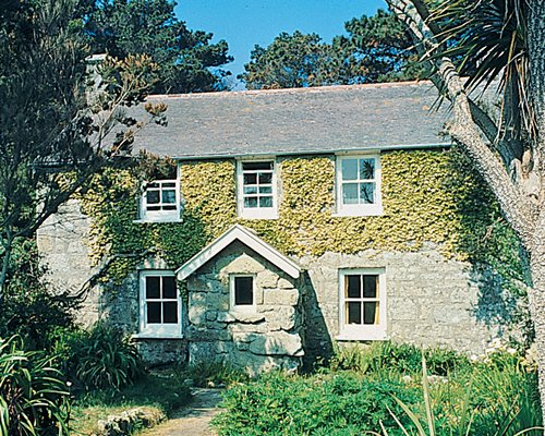 Scenic exterior view of Tresco Cottage surrounded by wooded area.