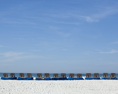 A beach view of chaise lounge chairs facing the ocean.