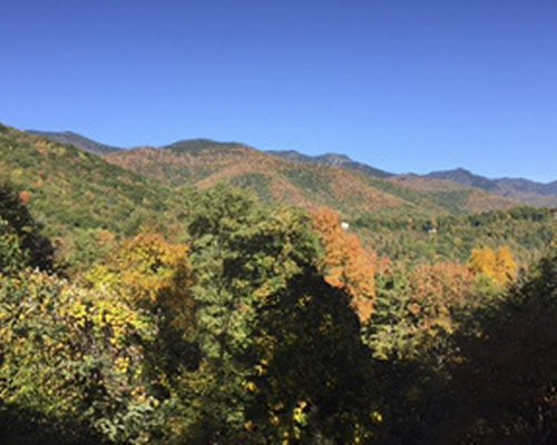 View of wooded area with mountains in the fall.