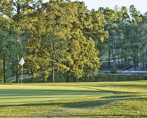 Scenic view of the golf course surrounded by wooded area.