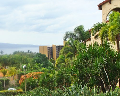 The Maui Lea Resort.