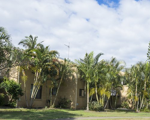 An exterior view of multiple resort units surrounded by coconut trees.