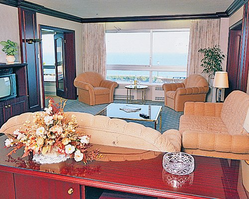 A well furnished living room with sofas and television.