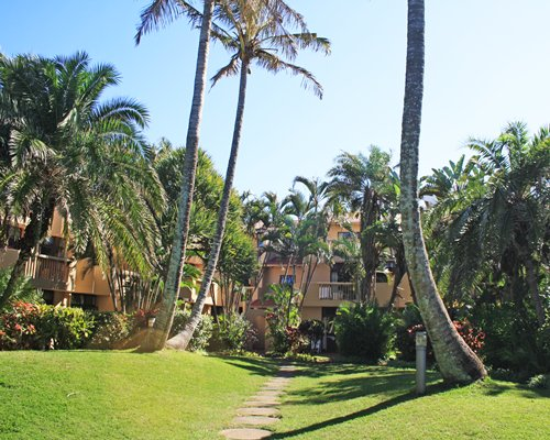 Scenic exterior view of the resort with coconut trees.