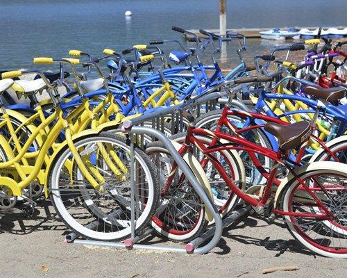 A set of bi cycles lined up alongside marina.
