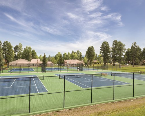 Outdoor recreation area with multiple tennis courts surrounded by wooded area.