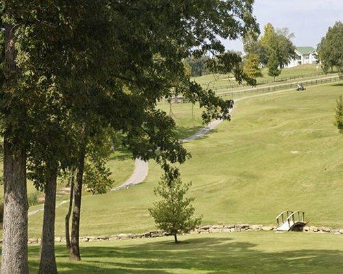 Scenic pathway leading to the resort.