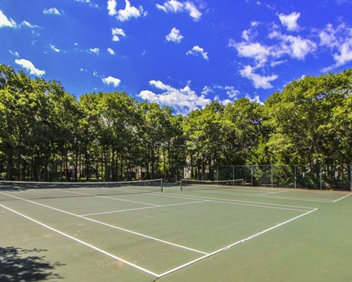 An outdoor tennis courts surrounded by wooded area.