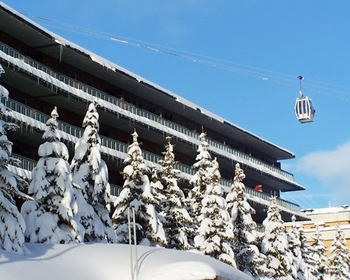 A cable car alongside pine trees covered with snow.