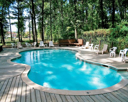 Outdoor swimming pool with chaise lounge chairs and patio chairs surrounded by wooded area.