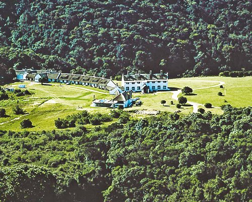 An aerial view of the Mount Sheba resort surrounded by wooded area.
