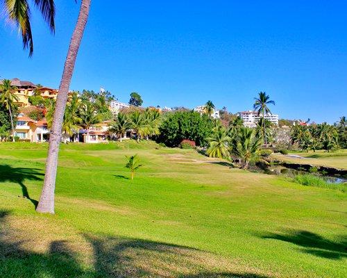 A scenic golf course.
