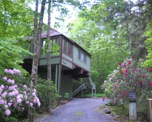 An exterior view of Mossy Creek on Sugar Mountain resort unit surrounded by trees.