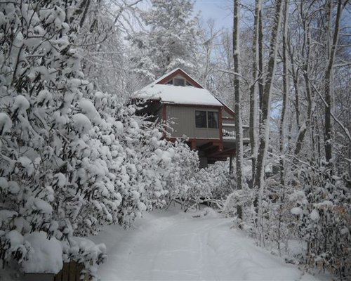 Exterior view of a unit at Mossy Creek on Sugar Mountain surrounded by wooded area during winter.