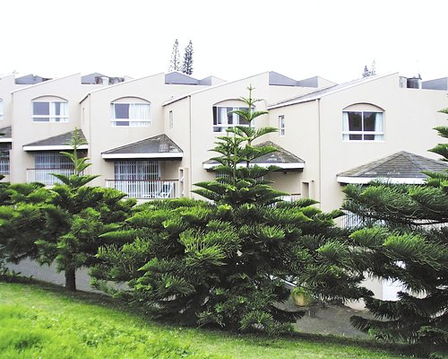 An exterior view of multiple story condos with pine trees.