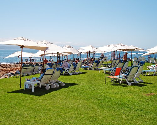 Chaise lounge chairs shaded by umbrellas facing the ocean.