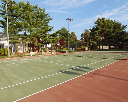Outdoor recreation area with tennis court surrounded by wooded area.