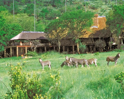 Scenic view of zebras grazing alongside the resort units.