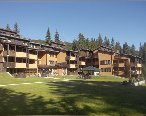Scenic exterior view of the multi story resort units surrounded by trees.