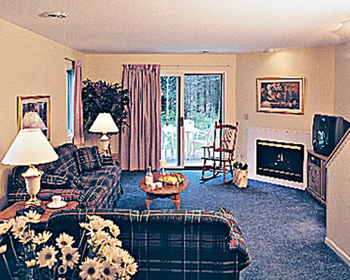 A well furnished living room with a television fire in the fireplace and patio.