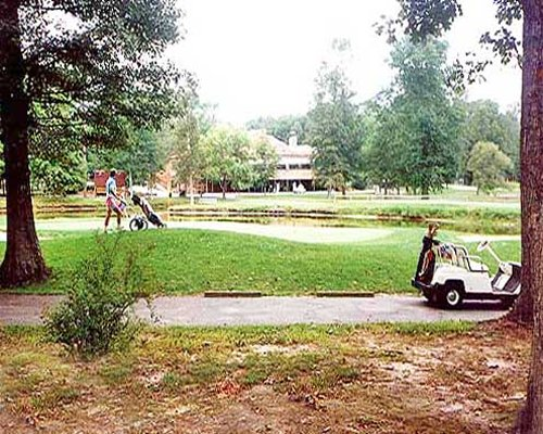 View of golf course with a golf cart.