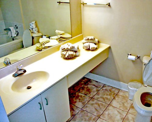 A bathroom with a toilet and single sink vanity.