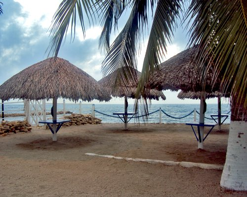 A view of thatched sunshades alongside the ocean.
