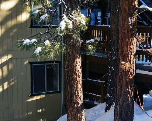 Exterior view of multiple units with balcony at Royal Aloha Tahoe/Ravc surrounded by wooded area during winter.