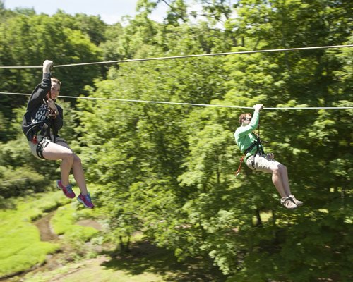 Group of people zip lining across a wooded area.
