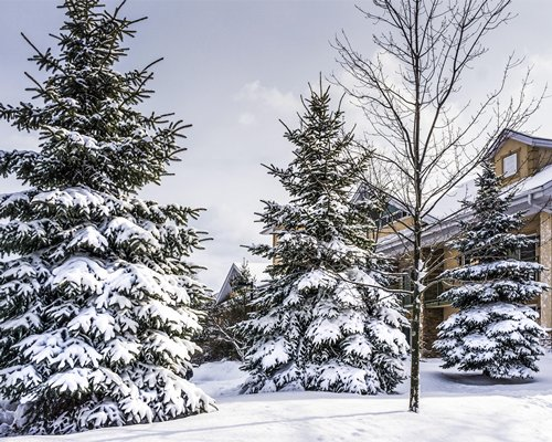 Georgian Bay Hotel & Conference Centre with snow covered pine trees during winter.